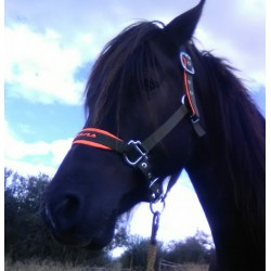 Horse halter size 1 Pony